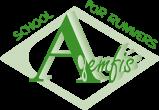 Agemfis Online